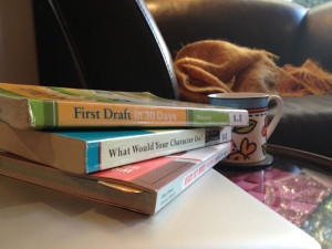 Books on writing processes, including First Draft in 30 Days and What Would Your Charater Do?